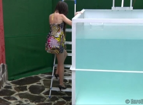 Brigitta got dunked plenty of times for us to enjoy the look of her falling and then emerging from the dunk tank, the look of her wet summer dress sticked to her body and the look of her tan pantyhose all wet shiny.
